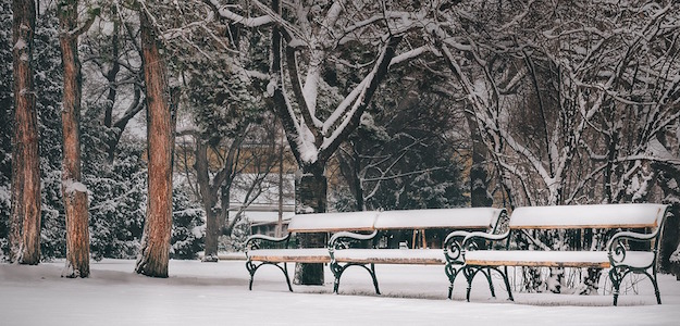Winterliches Wien